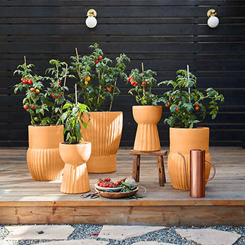 Crate and Barrel Terracotta Planters